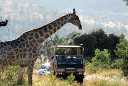 south africa zimbabwe lake arbor travel-036